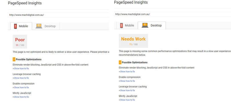 Screenshot from Google PageSpeed Insights